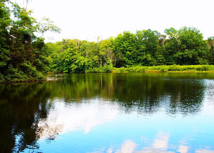 Lake Photography Greeting Card featuring the photograph Natures Mirror by Deborah Fay