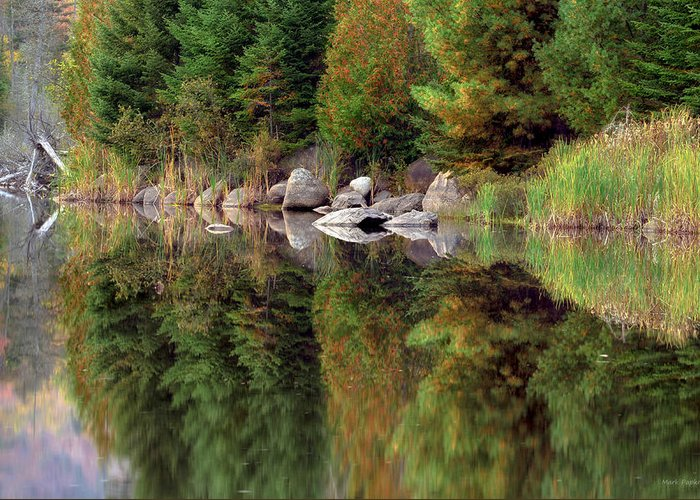 Reflection Greeting Card featuring the photograph Natures Reflection by Mark Papke
