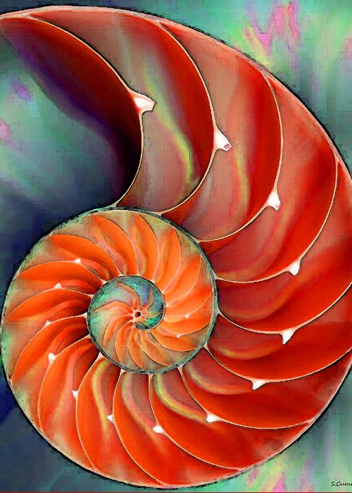 Seashells Digital Art Greeting Cards