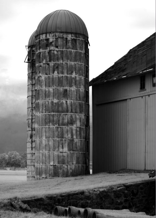 Michigan Greeting Card featuring the photograph Near Infrared Old Michigan Barn With Silos Bw Usa by Sally Rockefeller