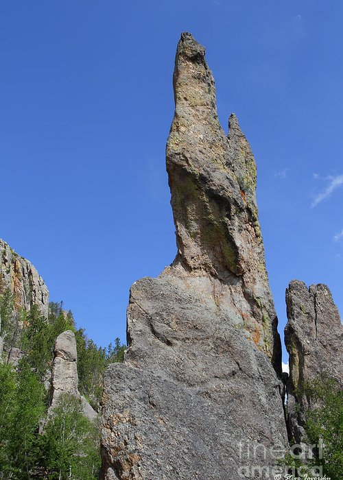 Needles Highway Greeting Card featuring the photograph Needles Highway by Steve Javorsky