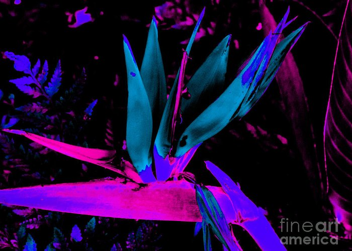 Flower Greeting Card featuring the digital art Neon Flower by John Le Brasseur