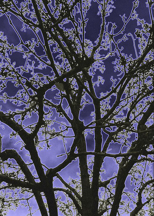Tree Greeting Card featuring the digital art Neon Winter Tree by Eric Forster