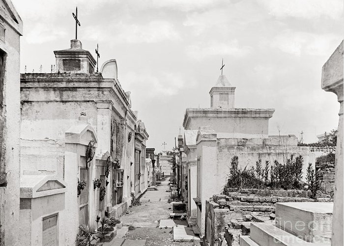 1901 Greeting Card featuring the photograph New Orleans: Cemetery by Granger