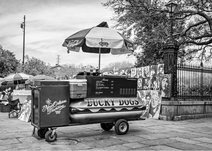 French Quarter Greeting Card featuring the photograph New Orleans - Lucky Dogs Bw by Steve Harrington