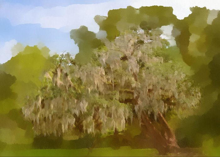 Spanish Greeting Card featuring the photograph New Orleans Spanish Moss On Live Oaks by Christine Till
