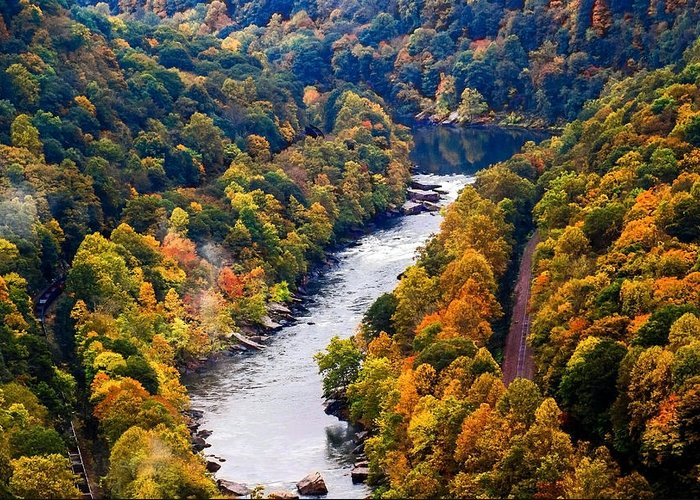 New River Greeting Card featuring the photograph New River Gorge by B Wayne Mullins