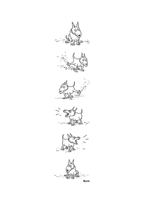 Pooch Drawings Greeting Cards