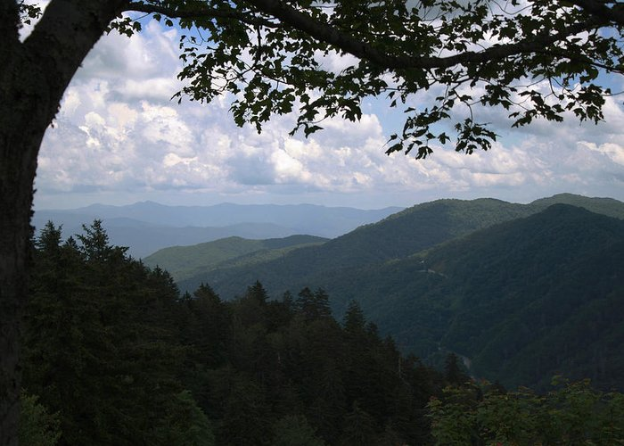 Newfound Gap Greeting Card featuring the photograph Newfound View by Dan McCafferty