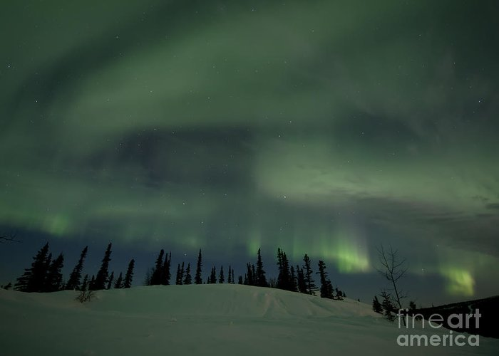 Skies Greeting Card featuring the photograph Night Lights by Priska Wettstein