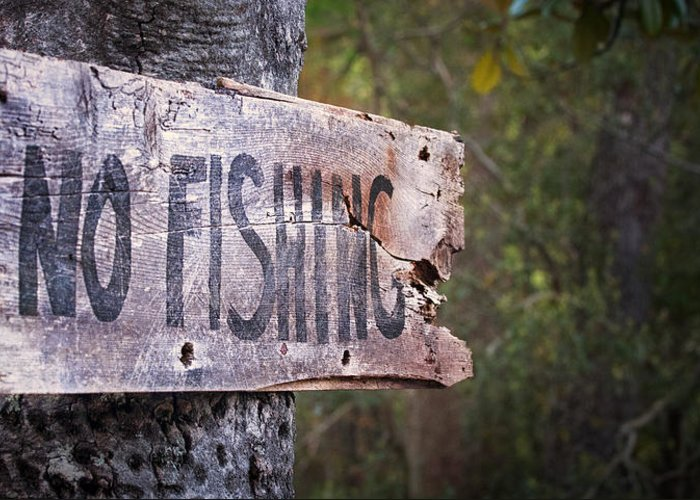 Signs Greeting Card featuring the photograph No Fishing by Brenda Bryant