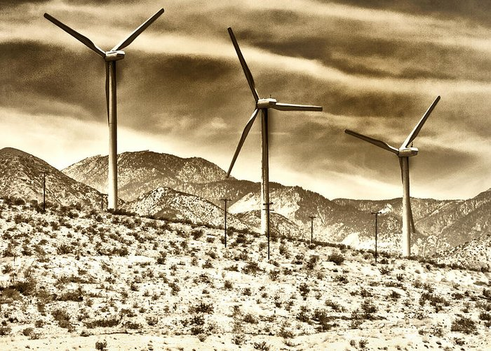 Featured Greeting Card featuring the photograph No Place Like Home 3 Palm Springs by William Dey