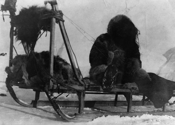 1909 Greeting Card featuring the photograph North Pole Sewing, C1909 by Granger
