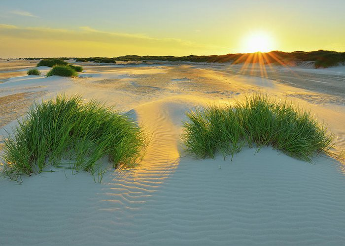 Scenics Greeting Card featuring the photograph North Sea Sandbank Kniepsand by Raimund Linke