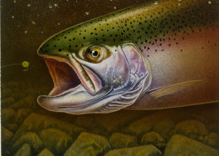 Jon Q Wright Greeting Card featuring the painting North Shore Steelhead by JQ Licensing