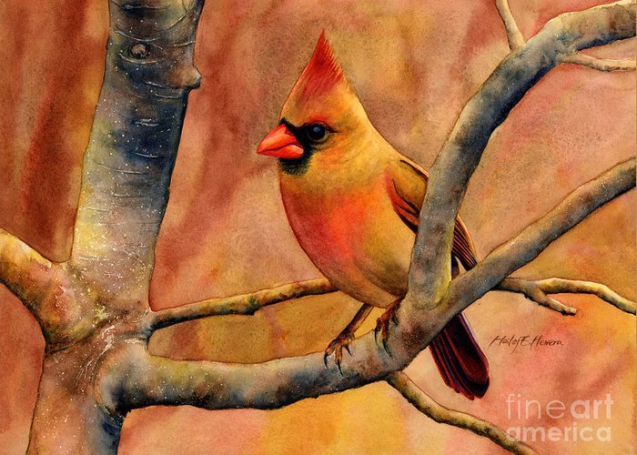 Cardinal Greeting Card featuring the painting Northern Cardinal II by Hailey E Herrera