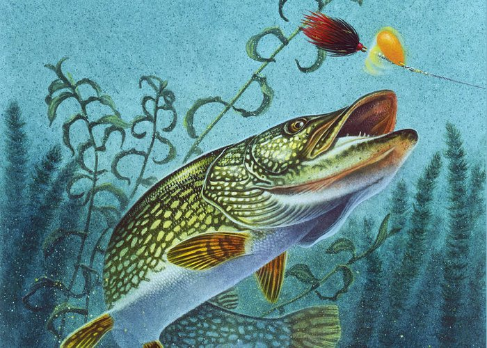 Jon Q Wright Greeting Card featuring the painting Northern Pike Spinner Bait by JQ Licensing