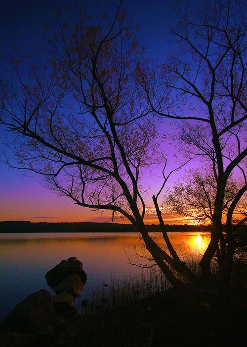 Sunrise Greeting Card featuring the photograph Nothing Gold Can Stay by Mitch Cat