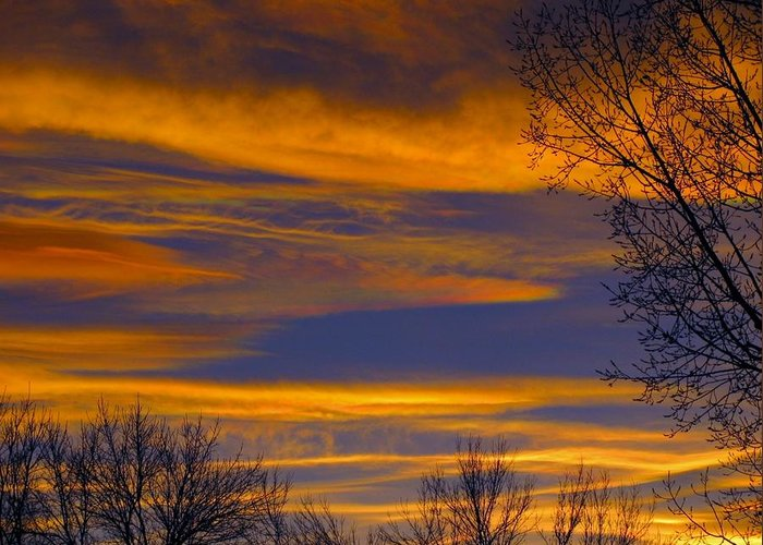 Nature Greeting Card featuring the photograph November Skies by Karen Briggs