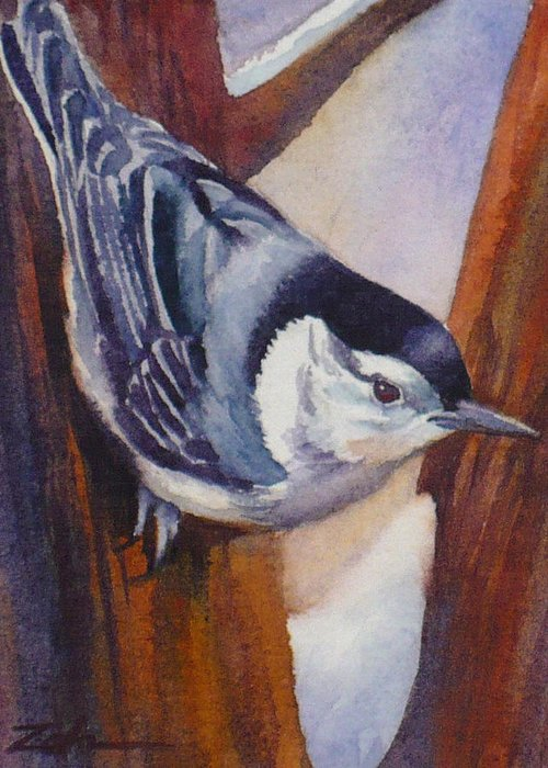 Nuthatch Greeting Card featuring the painting Nuthatch by Janet Zeh