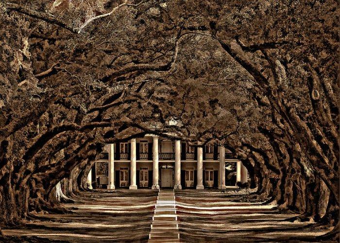 Oak Alley Plantation Greeting Card featuring the photograph Oak Alley Bw by Steve Harrington