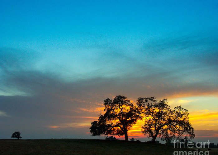 This Was Taken One Evening In The Sierra Foothills Not Far From My Home In Clovis Greeting Card featuring the photograph Oaks And Sunset 2 by Terry Garvin