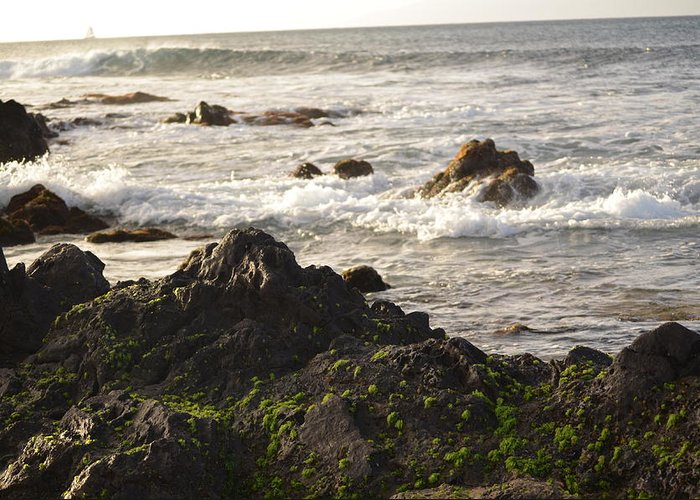 Ocean Greeting Card featuring the photograph Ocean's Edge by Betsy Stevens