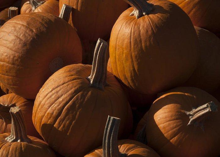 Pumpkins Greeting Card featuring the photograph October Pumpkins by Derek Dean