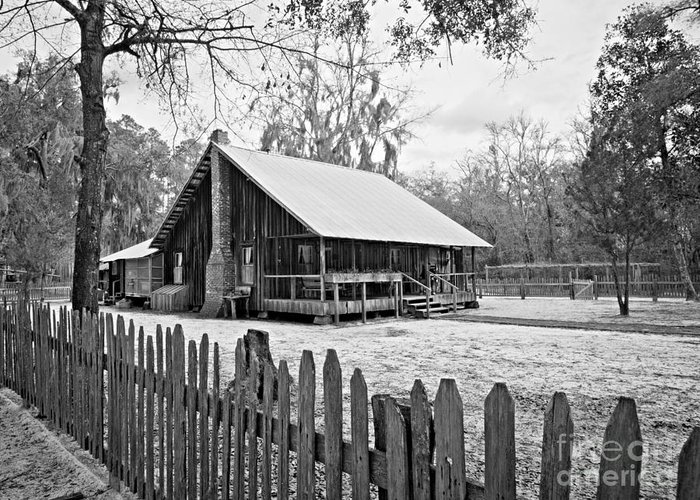 Chesser Homestead Greeting Card featuring the photograph Okefenokee Home by Southern Photo