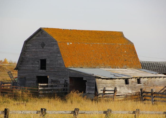 Old Barn Greeting Card featuring the photograph Old Barn 2 by Marv Russell