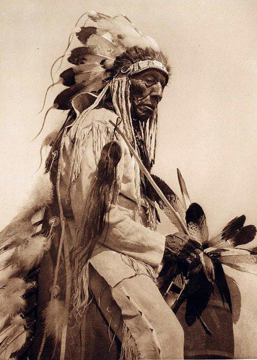 Old Cheyenne Greeting Card featuring the digital art Old Cheyenne by Studio Photo