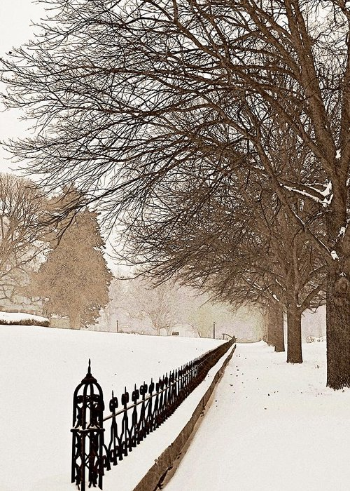 Winter Greeting Card featuring the photograph Old Fashioned Winter by Chris Berry