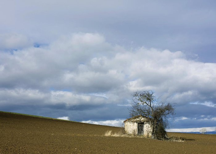 Outdoors Greeting Card featuring the photograph Old Hut. Auvergne. France by Bernard Jaubert