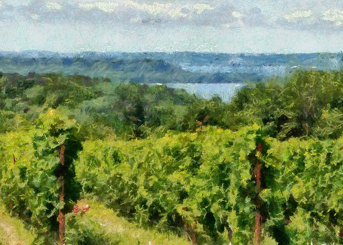 Vineyards Greeting Card featuring the photograph Old Mission Peninsula Vineyard by Michelle Calkins