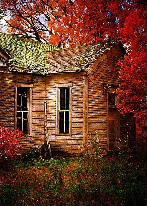 Schools Greeting Card featuring the photograph Old One Room School House In Autumn by Julie Dant