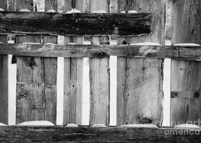 Old Greeting Card featuring the photograph old patched up wooden fence using old bits of wood in snow Forget by Joe Fox