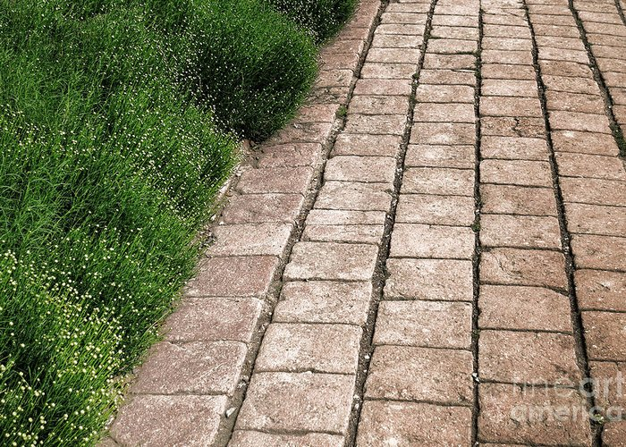 Brick Greeting Card featuring the photograph Old Pavers Alley by Olivier Le Queinec