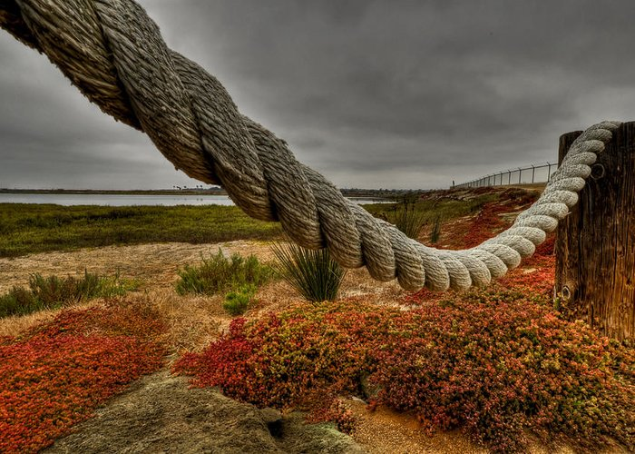 Rope Greeting Card featuring the photograph Old Rope by Brian Hayashi