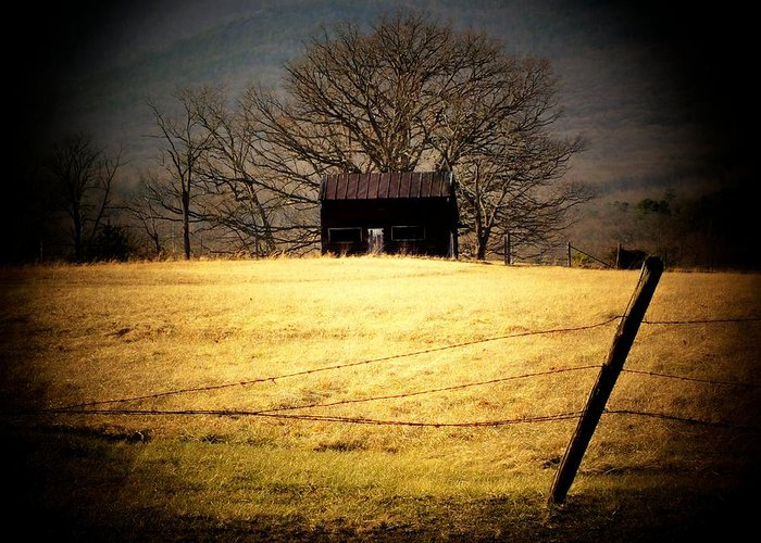 Shed Greeting Card featuring the photograph Old Shed by Michael L Kimble