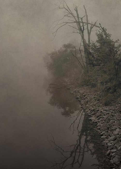 Fog Greeting Card featuring the photograph Old Soul by Dan Sproul