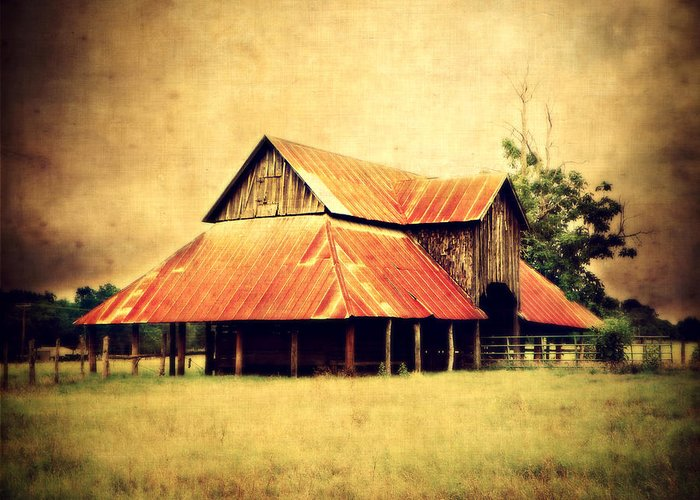 Barn Greeting Card featuring the photograph Old Texas Barn by Julie Hamilton