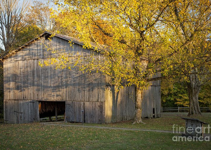 America Greeting Card featuring the photograph Old Tobacco Barn by Brian Jannsen