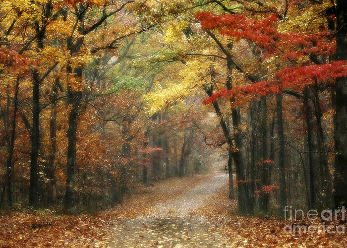 Natchez Trace Parkway Greeting Cards