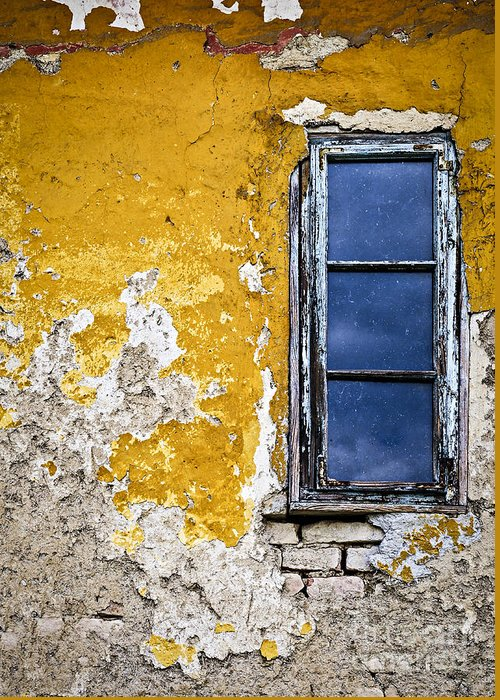 Wall Greeting Card featuring the photograph Old Wall In Serbia by Elena Elisseeva