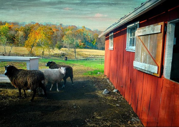 Farm Greeting Card featuring the photograph Old Warwick by Diana Angstadt