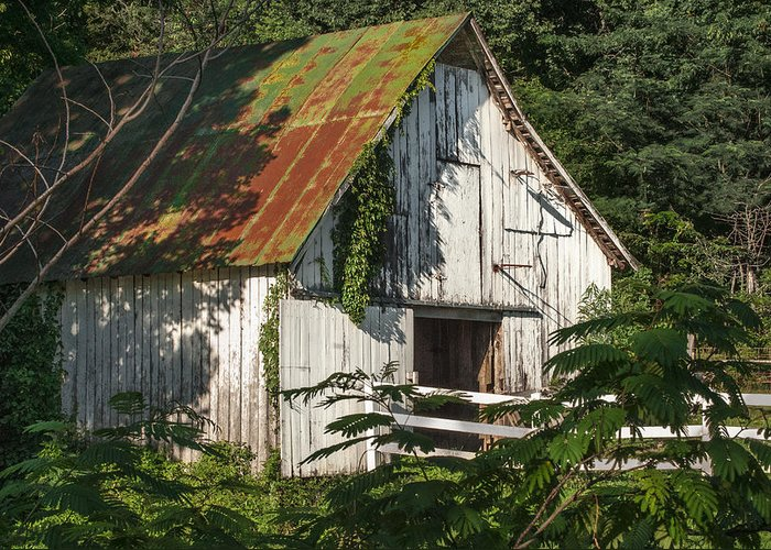 Barn Greeting Card featuring the photograph Old Whitewashed Barn In Tennessee by Debbie Karnes