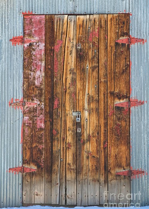 Door Greeting Card featuring the photograph Old Wood Door With Six Red Hinges by James BO Insogna