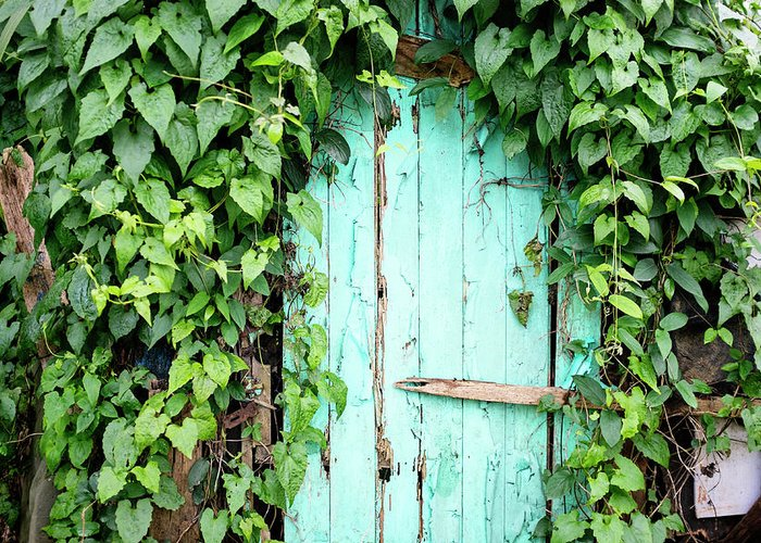 Outdoors Greeting Card featuring the photograph Old Wooden Door by Real444