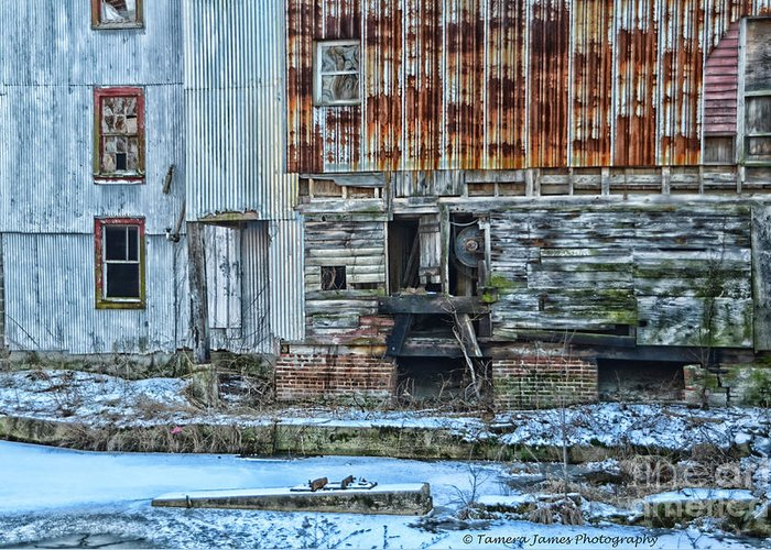 Feed Mill Greeting Card featuring the photograph Oldmill by Tamera James