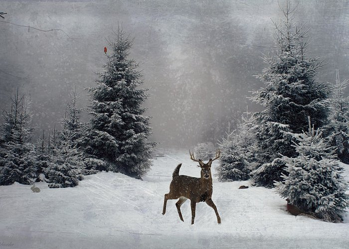 Winter Greeting Card featuring the digital art On A Snowy Evening by Lianne Schneider